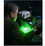 Microbe -Green Tech