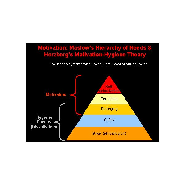 motivation in the workplace applying maslow and herzberg theories essay The hierarchy of needs theory was coined by psychologist abraham maslow in his 1943 paper a theory of human motivation the crux of the theory is that individuals' most basic needs must be met before they become motivated to achieve higher level needs.
