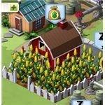Farm Harvested