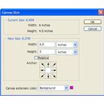 Canvas Size Dialog Box
