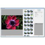 Watercolor Effect in Photoshop Elements 7