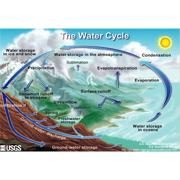 A Water Cycle Diagram Helps to Answer the Question, 'How Does the ...