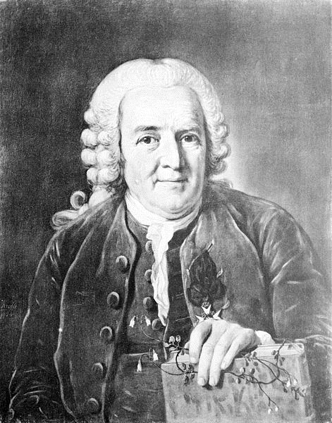 about carl linnaeus or carl von linn the father of taxonomy. Black Bedroom Furniture Sets. Home Design Ideas