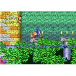 Aquatic Ruin, one of the many colorful stages of Sonic 2.