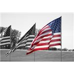 Patriotic images can be used for a variety of holiday projects.