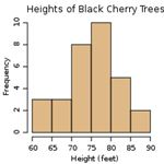 216px-Black cherry tree histogram.svg