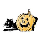 BlackCatand Pumpkin