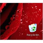 Recycle Bin Desktop Icon