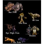 Current Druid Forms