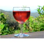 Elderberry Wine Benefits