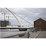 Samuel Beckett Bridge with a Reinforced Concrete Support Pier