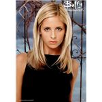 buffy the vampire slayer sarah michelle gellar 01