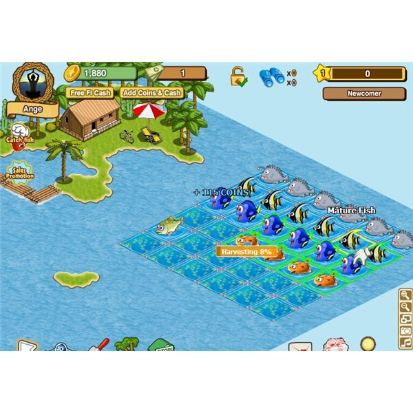 Fish tank games on facebook happy aquarium review best for Fish tank game