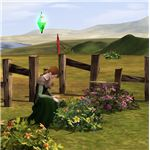 The Sims Medieval Physician Gathering Herbs