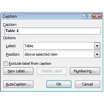 Add Captions in Microsoft Word 2007