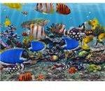 3D Fish School - Windows 7 Screensaver