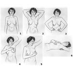 741px-Breast self-exam NCI visuals online