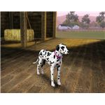 The Sims 3 dog in create a dog