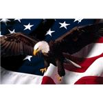patriotic-backgrounds-americaneagle
