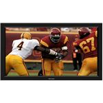 Projector Screen Fixed Frame - Football Running Back jpg
