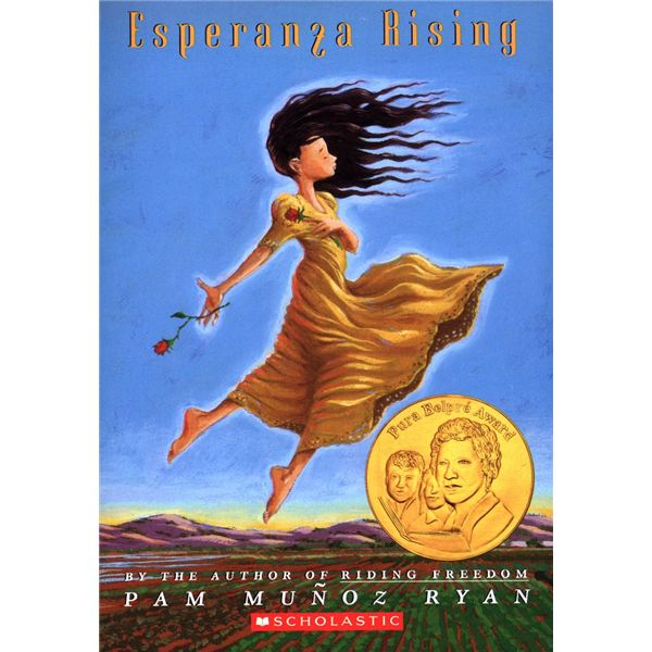 "an analysis of the main characters name as esperanza ""my name"" by sandra cisneros from the house on mango street  esperanza i have inherited her name, but i don't want to inherit her place by the window."