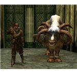 Guild Wars Traveler Nicholas