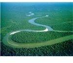 amazon river-12264