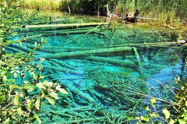 Glacial Remnant of a Pond, Austria