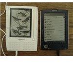 Free eBook Template