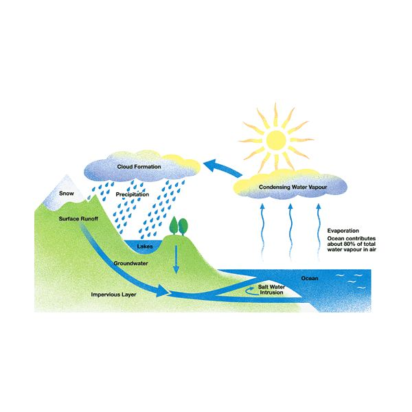 why sea water is salty When water evaporates, the salt is left behind slight changes in salinity can change the density of ocean water more saline water is denser than water with fewer salts.