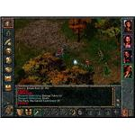 Baldur's Gate Screen