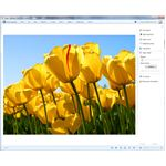 Windows Live Photo Gallery: Microsoft's iPhoto for Windows Users