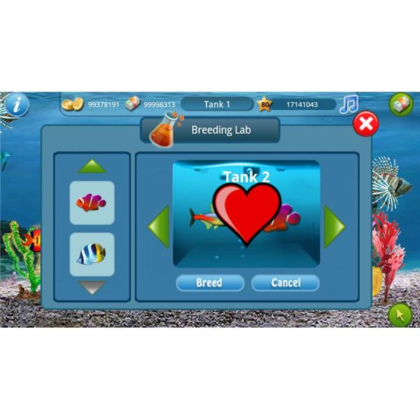 Build your own virtual aquarium with tap fish for Fish breeding games