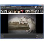 Viewer Tab in Zoner Photo Studio 12