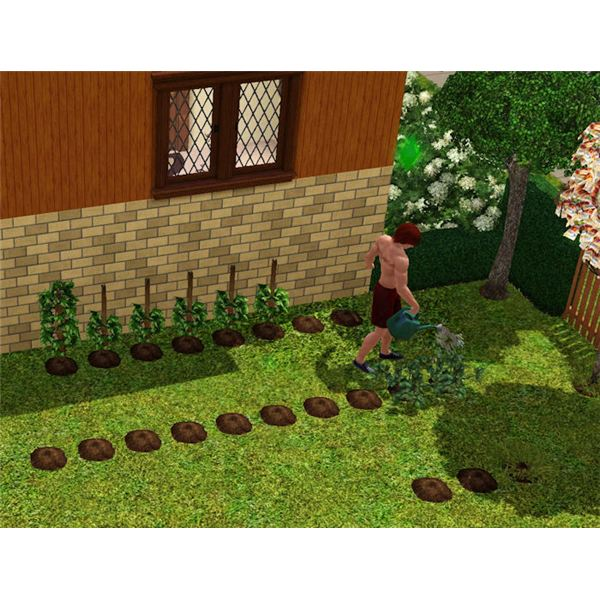 Landscape stone rochester ny sims 3 gardening guide for Sims 3 garden design ideas