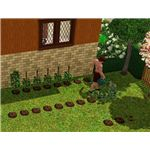 The Sims 3 Gardening at Home