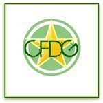 CFDGimage2