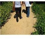granite path1