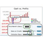 Cash Flow by PaloAltoSoftware