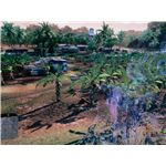 The plantation at the start of the Relic level in Crysis.