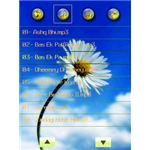 A Music Player Skins n Relaxing Tunes BlackBerry App