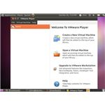 VMware Player running on Ubuntu 10.10