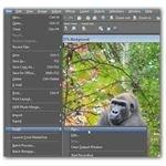 Run a Script in Paint Shop Pro
