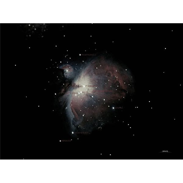 Backyard Astronomy With Binoculars: View the Night Sky ...