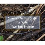 Summer Nature Crafts for Kids Two Fun