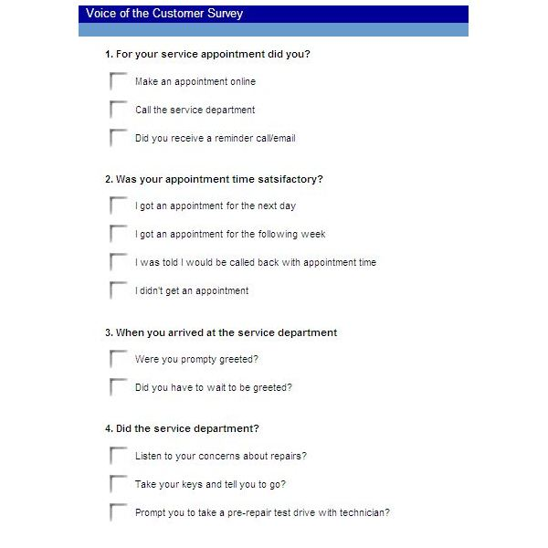 Free Example Of A Voice Of The Customer Survey