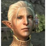 Dragon Age 2 - Elf Keeper
