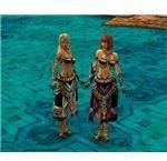 Guild Wars Ritualist Elite Luxon Armor