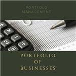 Portfolio of Businesses