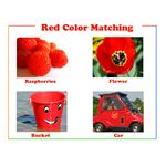 Red preschool printable color flash card